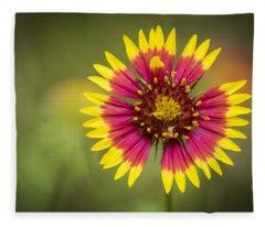 Spring Indian Blanket Fleece Blanket