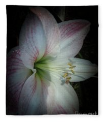 Spring Morning Amaryllis Fleece Blanket