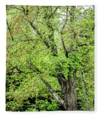 Spring Time By The River Fleece Blanket