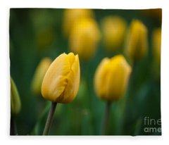 Spring Tulips Yellow Fleece Blanket