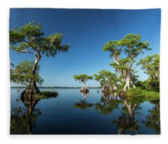 Spring Vistas At Lake Disston Fleece Blanket