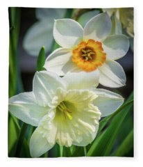 Springy Fleece Blanket
