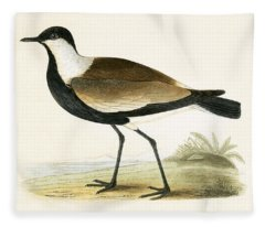 Spur Winged Plover Fleece Blanket