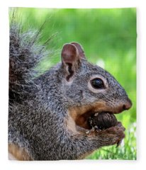 Squirrel 1 Fleece Blanket