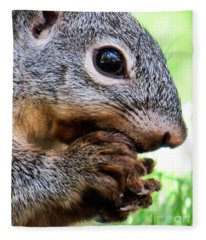 Squirrel 3 Fleece Blanket