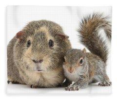 Squirrel And Guinea Fleece Blanket