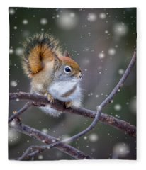 Squirrel Balancing Act Fleece Blanket