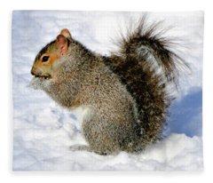 Squirrel In Winter Fleece Blanket