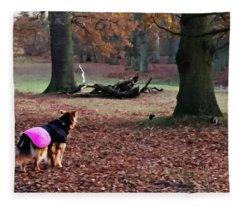 Squirrel Watch Fleece Blanket