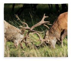 Stag Fight Fleece Blanket