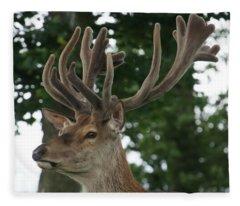 Stag Head. Fleece Blanket