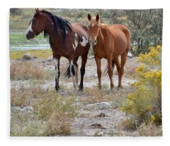 Stallion And Mare Fleece Blanket