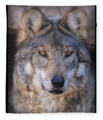 Stare Down By Sancho Fleece Blanket