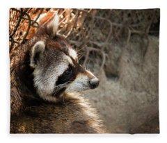 Staring Raccooon Fleece Blanket