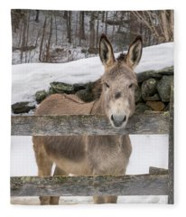 Stoic Burro Fleece Blanket