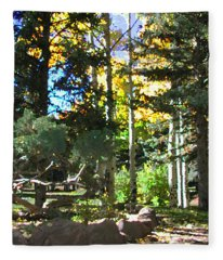 Stone Park Trails Fleece Blanket