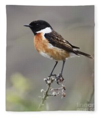 Stonechat Fleece Blanket
