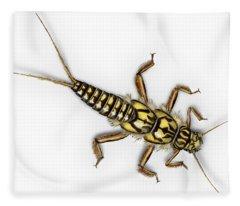 Stonefly Larva Nymph Plecoptera Perla Marginata - Steinflue -  Fleece Blanket