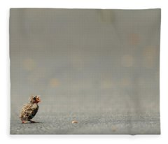 Story Of The Baby Chipping Sparrow 3 Of 10 Fleece Blanket