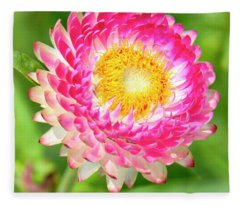Strawflower Fleece Blanket