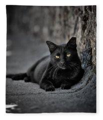 Stray Cat Fleece Blanket