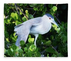 Stretching Its Wings Fleece Blanket