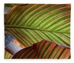Striped Canna Lily Leaves Fleece Blanket