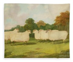 Study Of Sheep In A Landscape   Fleece Blanket