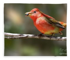 Stuffed Summer Tanager Fleece Blanket