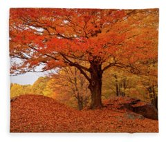 Sturdy Maple In Autumn Orange Fleece Blanket
