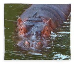 Submerged Hippo Fleece Blanket