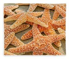 Sugar Starfish Fleece Blanket