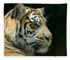 Fauna Fleece Blankets