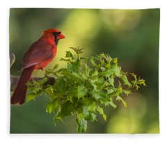 Summer Cardinal New Jersey Fleece Blanket