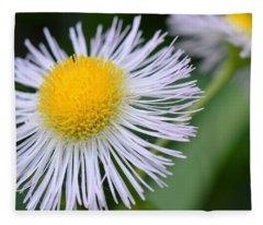 Summer Flower Fleece Blanket