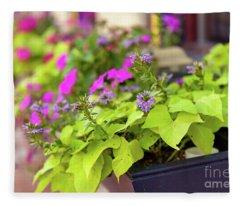 Summer Flowers In Window Box Fleece Blanket