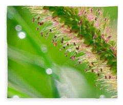 Summer Grass Fleece Blanket