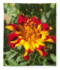 Summer Marigold Fleece Blanket