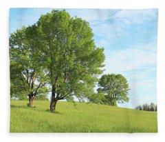Summer Trees Fleece Blanket