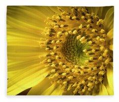 Sun Burst Fleece Blanket