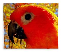 Sun Conure  Fleece Blanket