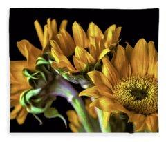 Sun King Fleece Blanket
