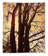 Sun-shielding Gallantrees Fleece Blanket