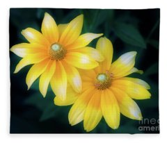 Sun Sisters Fleece Blanket