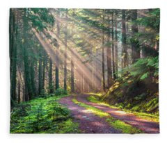 Sunbeams In Trees Fleece Blanket