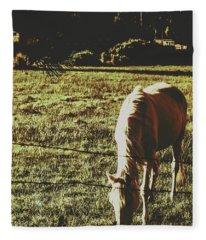 Sundown Horse Meadow Fleece Blanket