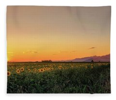 Sunfield Road Fleece Blanket