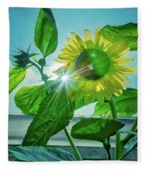 Sunflower 5361 Fleece Blanket