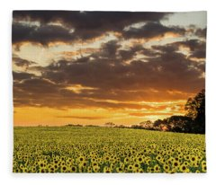 Sunflower Fields Sunset Fleece Blanket
