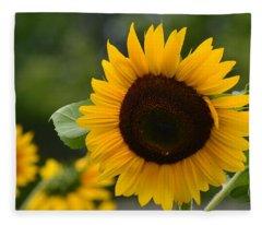 Sunflower Group Fleece Blanket